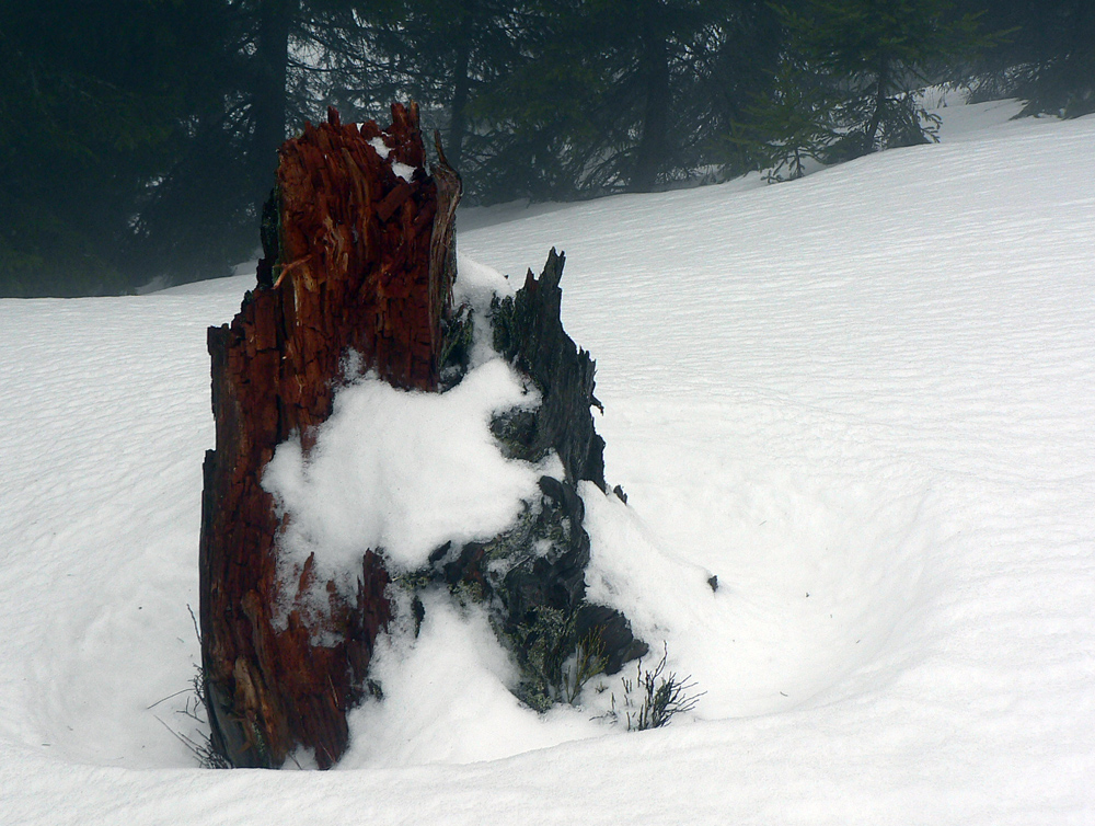stav-snehu-a-stopy-na-hrebeni-velkofatranskom